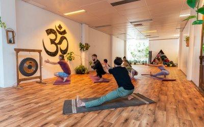 Chameleon Yoga Classes
